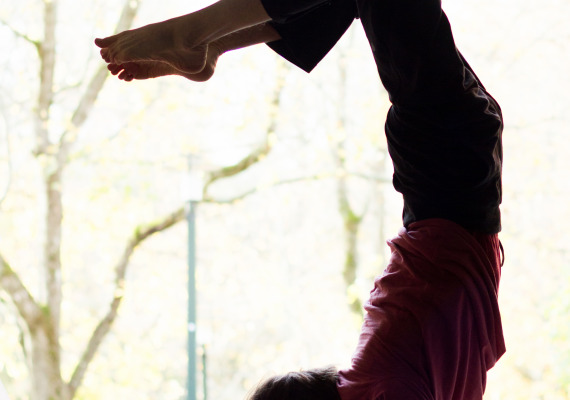 Yoga: the Path